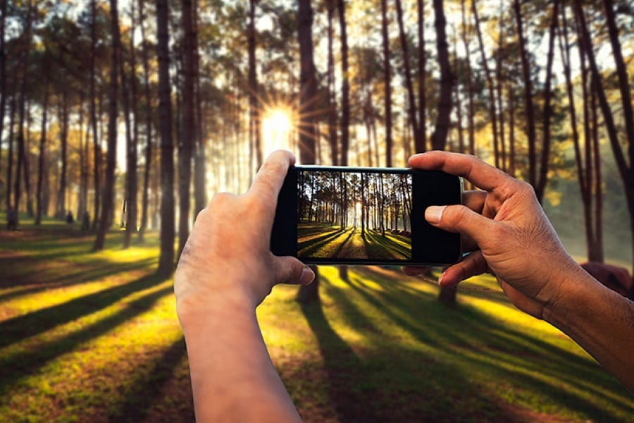 How To Get The Best Lighting For Smartphone Photos